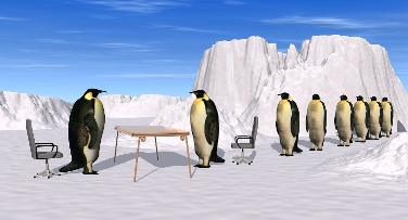 bigstock-Penguins-Recruiting-Interview-small